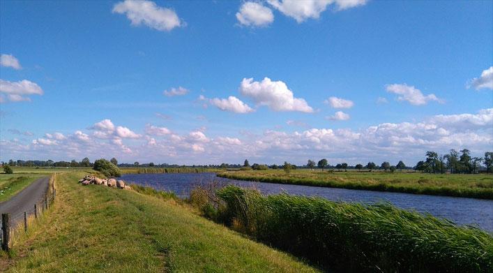 Deich der Ems, Ostfriesland